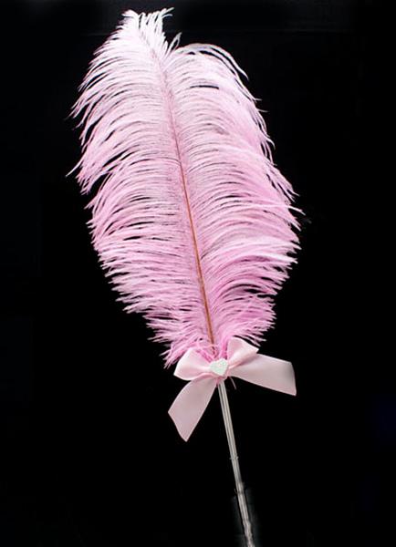 Ручка-перо для свадьбы своими руками