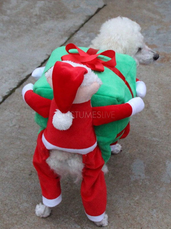 ... Dog Costume Carrying Box Halloween Ride On Costume Red Velvet Christmas Pet Costume ... & Dog Costume Carrying Box Halloween Ride On Costume Red Velvet ...