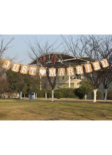 Decorações de casamento Banner só casou-se com os papéis cartão marrom