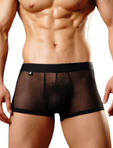 Black Sexy Trunks Tulle Semi Sheer Men's Boxer Briefs