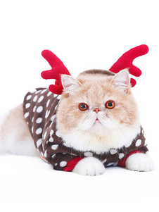 القط زي عيد الميلاد اللباس براون بولكا دوت كلب الملابس
