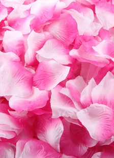 Seta fantastica 1200 pezzi petali per matrimonio