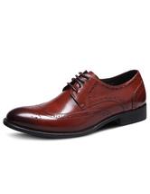 Men's Dress Shoes Cowhide Almond Toe Lace Up Brogue Shoes