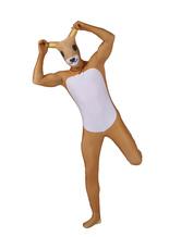 Anime Costumes AF-S2-245598 Halloween Sweet Cartoon Bear Lycra Spandex Multicolor Zentai Suit