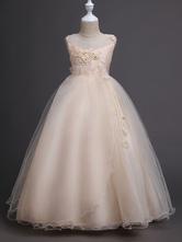 Платья из цветной девушки Платья с принцессой для детей
