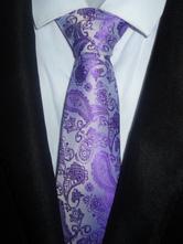 Purple Chic Ties Jacquard Polyester Men's Neck Tie