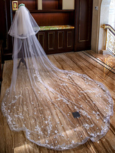 Cathedral Wedding Veils Waterfall Lace Applique 2 Tier Long Bridal Veils