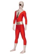 Anime Costumes AF-S2-242980 Halloween Superhero Multi-Color Lycra Spandex Zentai Suit