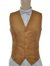 Anime Costumes AF-S2-244076 Vintage Steampunk Costume Waistcoat Gold Men's Back Strap Retro Suit Vest