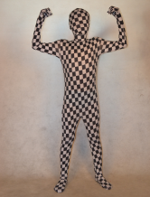 Anime Costumes AF-S2-308764 Halloween Multi Color Unisex Checkered Lycra Spandex Multicolor Zentai Suits