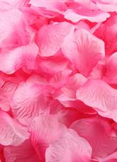 Silk Beautiful 1200 pieces Petals for Wedding