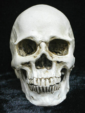 Anime Costumes AF-S2-615767 Halloween Grinning Skull Decoration