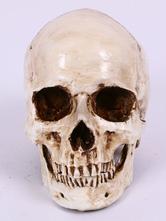 Anime Costumes AF-S2-615757 Halloween Skull Simulation Human Skull
