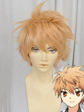 Anime Costumes AF-S2-661759 Rewrite Tennouji Kotarou Cosplay Wig