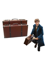 Fantastic Beasts And Where To Find Them Newt Scamander Cosplay Waistcoat  Halloween