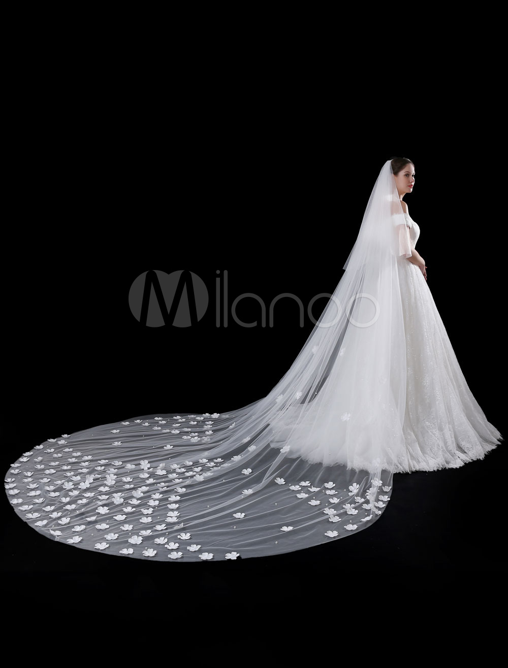 Tulle Wedding Veil Cathedral Ivory Cut Edge 3D Flowers Applique Two Tiered Waterfall Bridal Veil