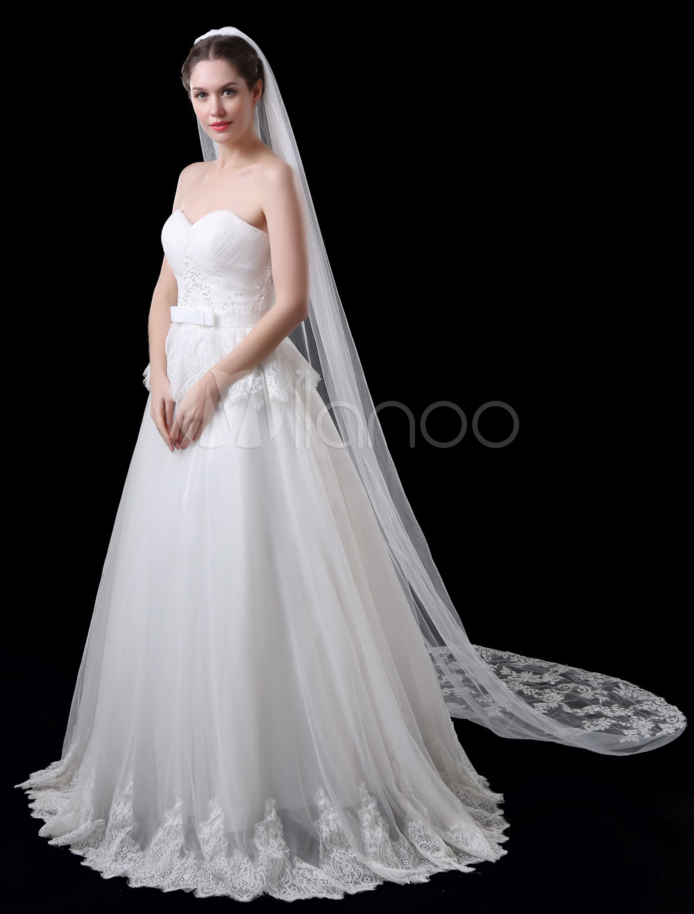 Buy Cathedral Wedding Veil Tulle Ivory Lace Applique Edge One Tier Bridal Veil for $15.99 in Milanoo store