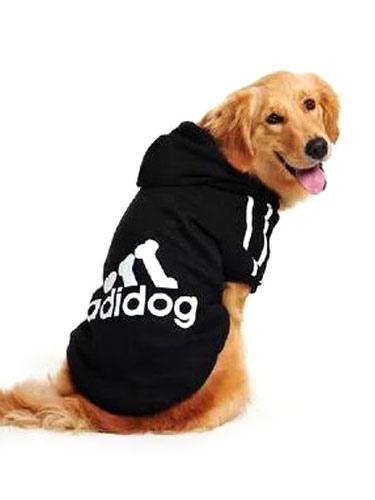Abbigliamento per cani roma centro