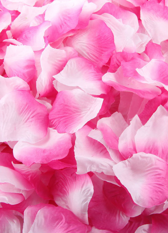Silk Fantastic 1200 pieces Petals for Wedding