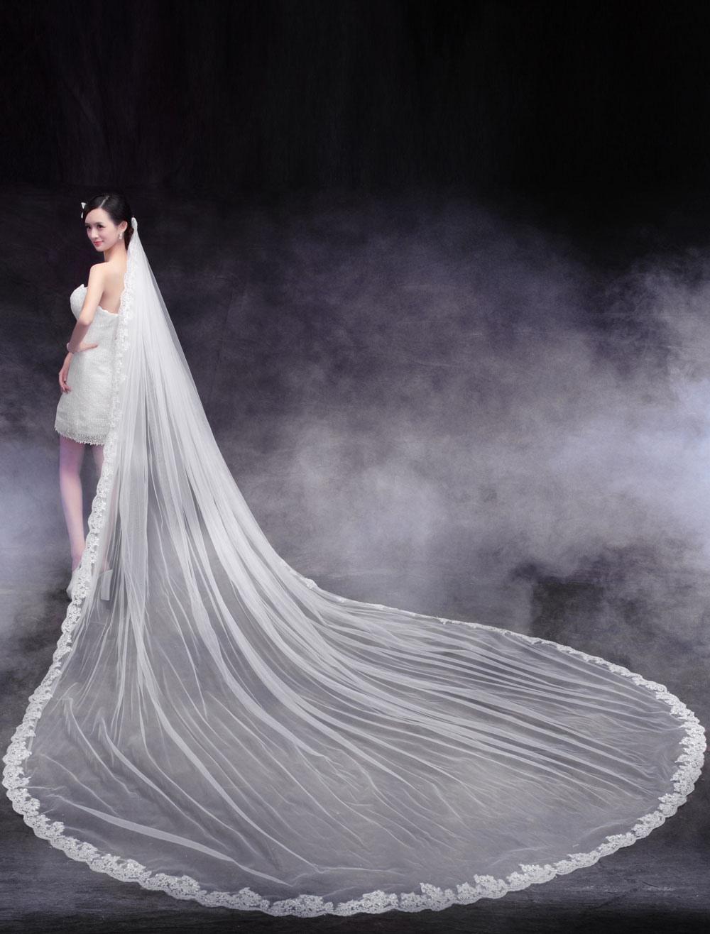 Elegant One-Tier Lace Tulle Bridal 350cm Wedding Veils