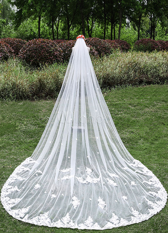 Cathedral Wedding Veils Waterfall One-Tier Lace Applique Edge Veils With Comb(300cm Length)