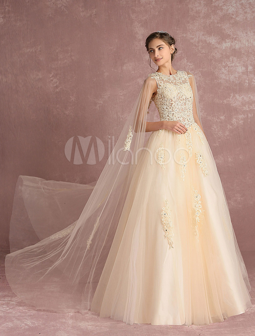 Buy Tulle Wedding Dress Vanilla Cream Bridal Dress Watteau Train Lace Applique Beading Cutout Back Illusion A Line Floor Length Bridal Gown for $193.49 in Milanoo store
