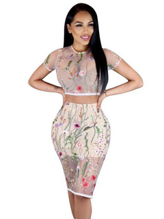 Embroidered Skirt Set Women's Semi Sheer Round Neck Short Sleeve Shaping Crop Top With Wrap Skirt