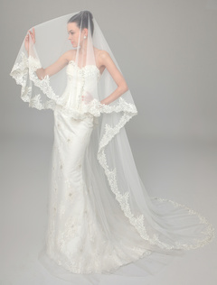 Ivory Tulle Waterfall Applique Bridal Wedding Cathedral Veil