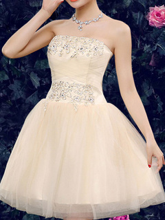 Champagne Evening Dress Embroidered Backless Tulle Flare Dress
